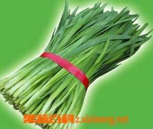 韭菜贮存和营养成份